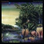 Album - Fleetwood Mac - Little Lies