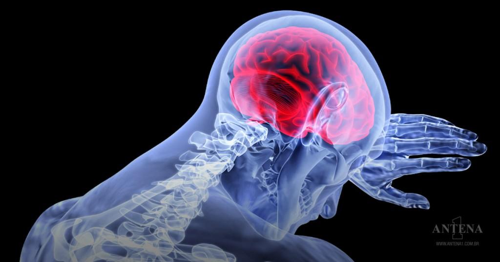 Placeholder - loading - Cérebro humano (Foto: Pixabay)
