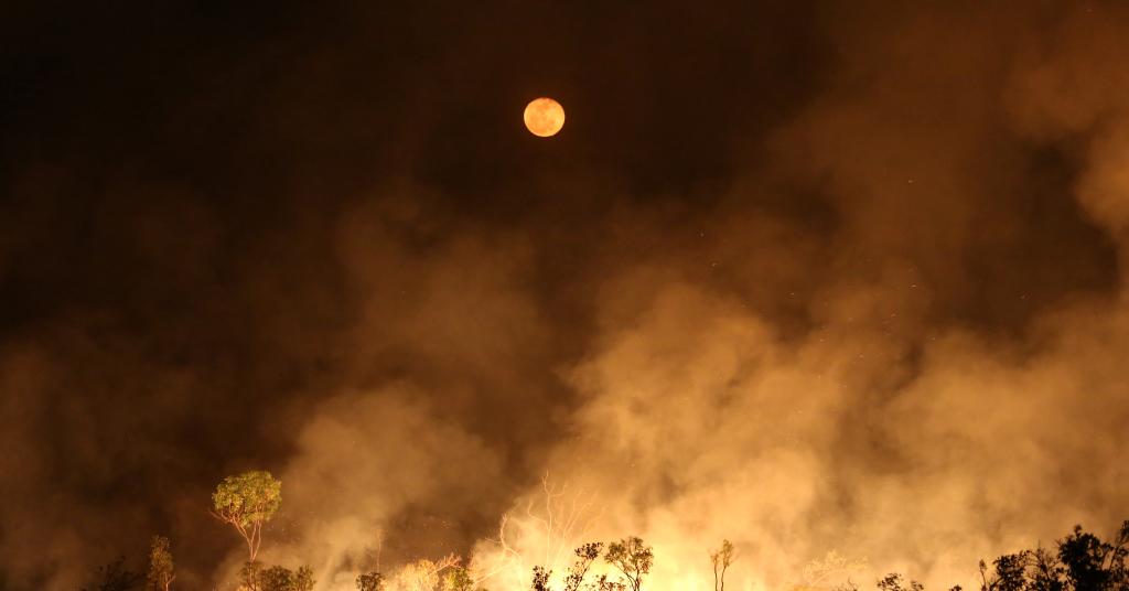 Placeholder - loading - Incêndio na floresta amazônica, no Estado do Amazonas 15/09/2019 REUTERS/Bruno Kelly