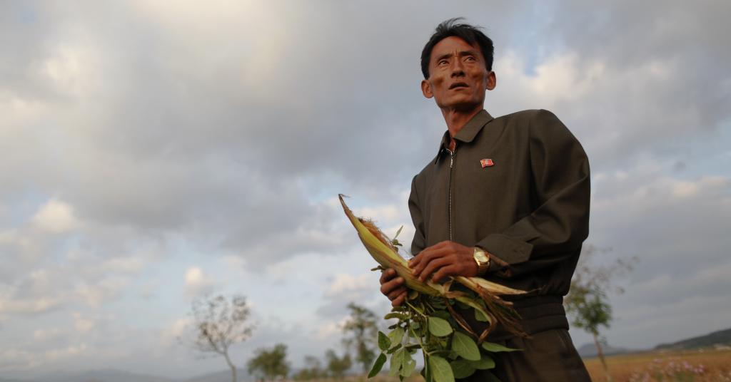 Placeholder - loading - Gerente de cooperativa de agricultores da Coreia do Norte em área de plantio afetada por problemas climáticos 29/09/2011 REUTERS/Damir Sagolj