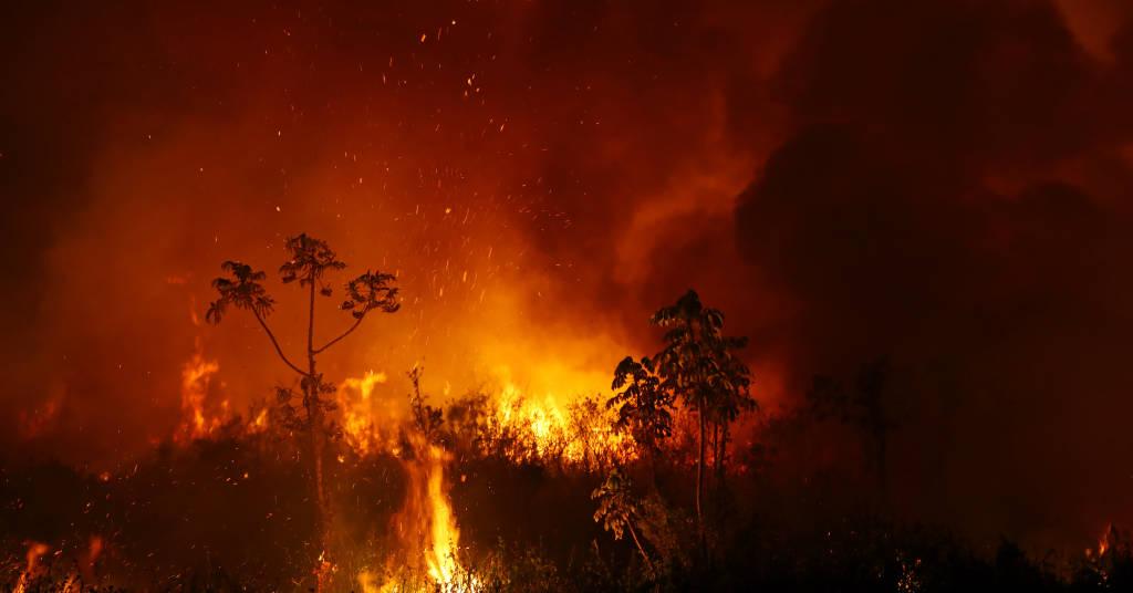Placeholder - loading - Foco de incêndio atinge área do Pantanal, em Poconé (MT) 03/09/2020 REUTERS/Amanda Perobelli