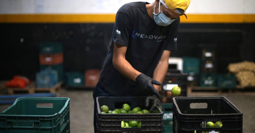 Placeholder - loading - Trabalhador prepara alimentos para transporte em cidade de Piedade, SP 08/04/2020 REUTERS/Rahel Patrasso