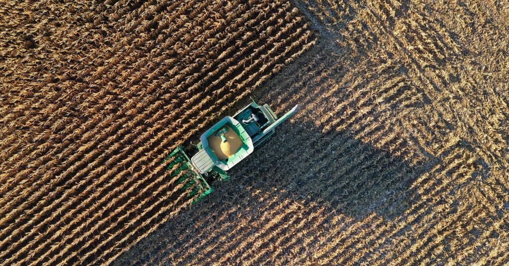 Placeholder - loading - Vista aérea de colheita de milho  REUTERS/Bing Guan/File Photo