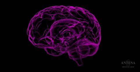 Placeholder - loading - Imagem da notícia Cientistas criam um cerebelo artificial