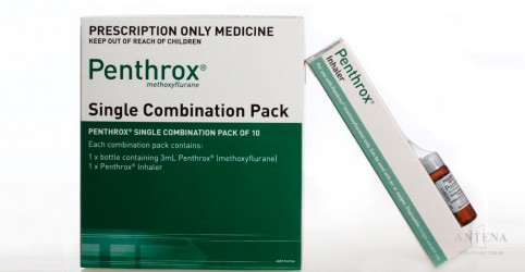 Placeholder - loading - Imagem da notícia Medicamento disponível na Europa controla a dor rapidamente