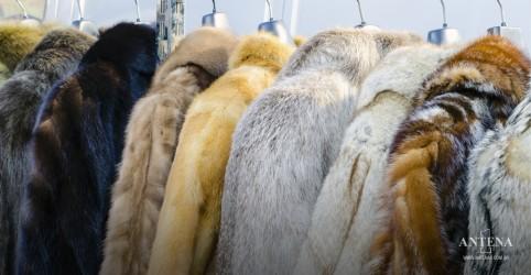 Placeholder - loading - Marcas de luxo banem uso de peles de animais nas próximas criações