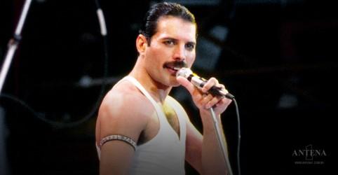 Placeholder - loading - Imagem da notícia 10 curiosidades sobre Freddie Mercury