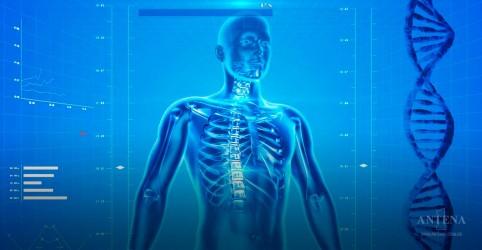 Técnica de super-resfriamento mantém fígados saudáveis por mais tempo