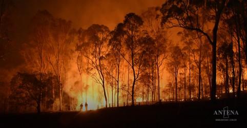 Placeholder - loading - Imagem da notícia Fumaça atrapalha resgate na Austrália