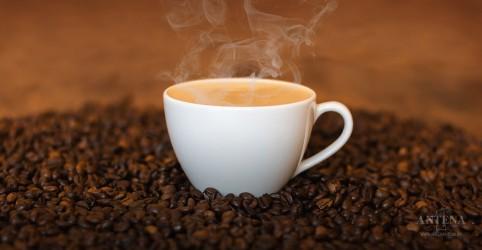 Crianças podem tomar café? Especialistas de fora respondem