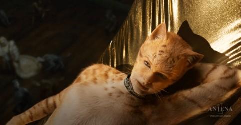 'Cats', musical com Taylor Swift, ganha trailer; Confira
