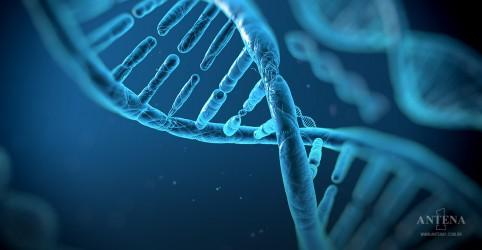 Células cancerígenas serão testadas no espaço