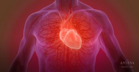 Gel adesivo, que cura feridas nas artérias, é criado