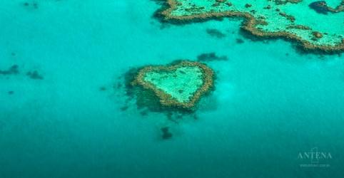 Coração da Barreira de Corais da Austrália é reaberto para turistas