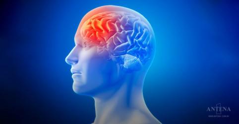 Placeholder - loading - Imagem da notícia Sobrecarregar o cérebro compromete a longevidade