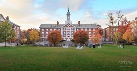 Confira as 20 melhores universidades do mundo