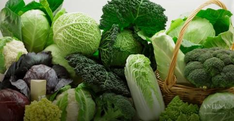 Importância das hortaliças para a saúde