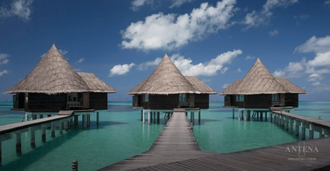 Hotel de luxo oferece estadia gratuita para aqueles que cuidarem de tartarugas