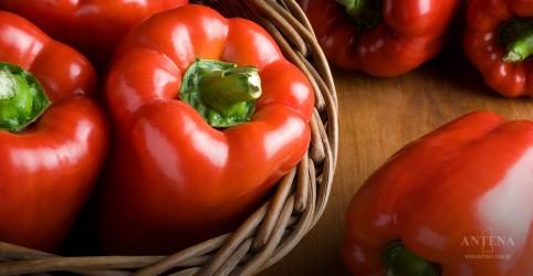 5 alimentos que ajudam a reduzir o colesterol rapidamente