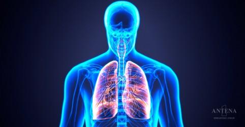 Placeholder - loading - Imagem da notícia Conheça nova técnica que pode reabilitar pulmões danificados