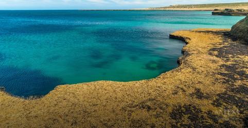 Placeholder - loading - Imagem da notícia Península Valdés, localizada na Patagônia Argentina, é um paraíso natura