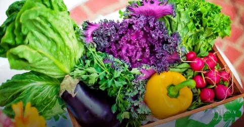 Placeholder - loading - Cinco maneiras de acabar com o desperdício de alimentos