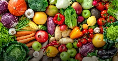 Placeholder - loading - Imagem da notícia Dieta à base de vegetais pode auxiliar na prevenção do diabetes tipo 2