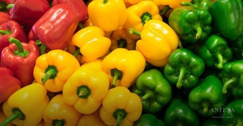 Placeholder - loading - Imagem da notícia Confira alimentos com quantidade significativa de Vitamina C