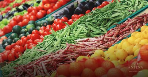 Inca lança cartilha que desmente boatos de alimentos que curam o câncer
