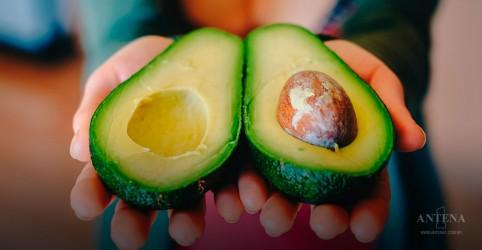 Placeholder - loading - Imagem da notícia Alimentos ricos em gordura, mas benéficos