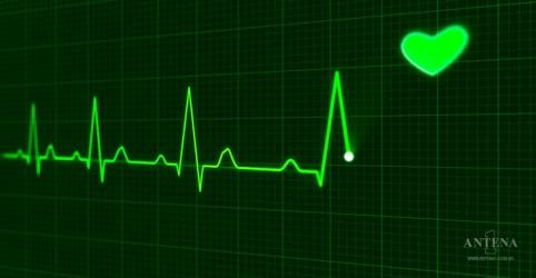 Placeholder - loading - Imagem da notícia Cientistas conseguiram imprimir coração