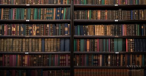 Placeholder - loading - Imagem da notícia Conheça as bibliotecas mais belas do planeta