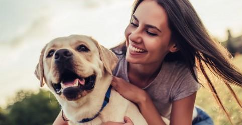 Cachorros são usados no exterior para tratar o alcoolismo