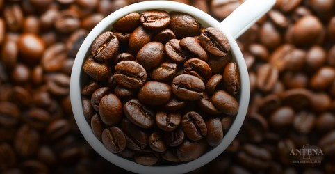 Placeholder - loading - Imagem da notícia Cafeína melhora a produtividade