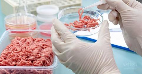 Placeholder - loading - Imagem da notícia Saiba mais sobre a carne de laboratório