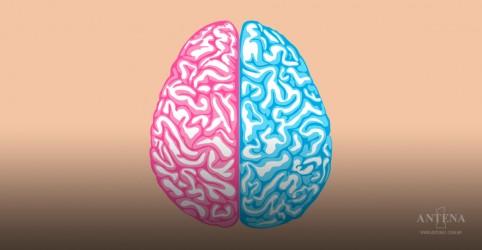Entenda como funciona o cérebro das mulheres durante o ciclo menstrual
