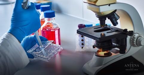 Placeholder - loading - Imagem da notícia Um caminho para tratar infecções resistentes