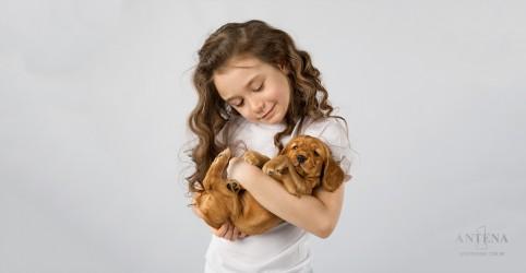 Placeholder - loading - Imagem da notícia Convívio com animais pode evitar a asma