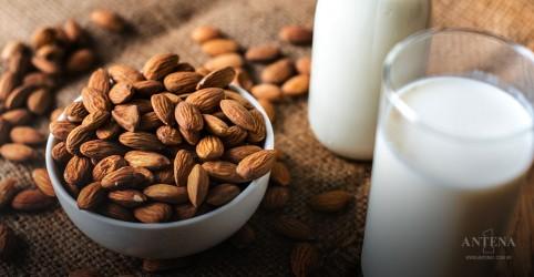 Placeholder - loading - Imagem da notícia Saiba mais sobre os leites vegetais
