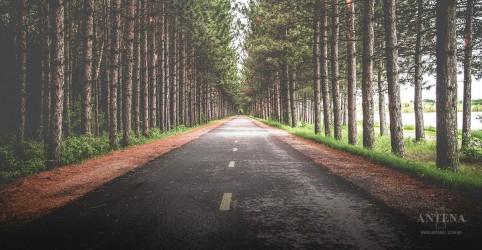 8 dicas para melhorar o seu senso de direção