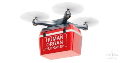 Placeholder - loading - Imagem da notícia Drone é usado para transportar órgãos no exterior