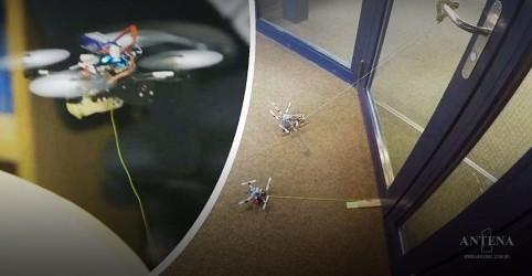 Placeholder - loading - Imagem da notícia Drone consegue levantar até 40 vezes o seu peso