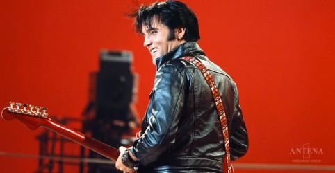 """""""Elvis Presley Day"""" é declarado na cidade do cantor"""