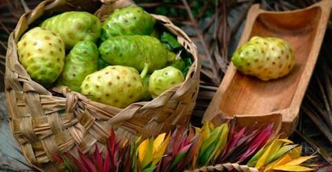 Alimentos saudáveis mencionados em estudo do exterior; Confira