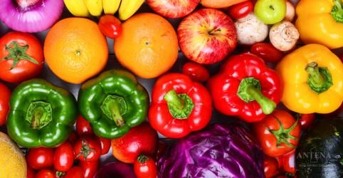 Comer frutas e vegetais pode impactar positivamente na saúde do cérebro