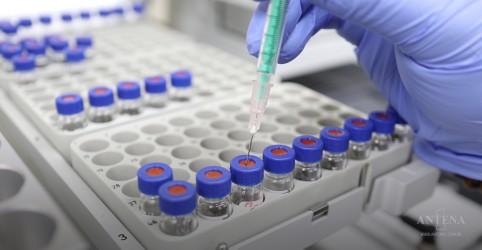 Placeholder - loading - Imagem da notícia Vacina da Novavax contra a Covid-19 apresenta resultados positivos na fase I