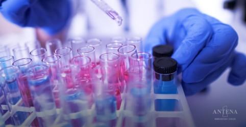 Placeholder - loading - Imagem da notícia Cientistas brasileiros descobrem anticorpo de cavalos potente contra a Covid-19