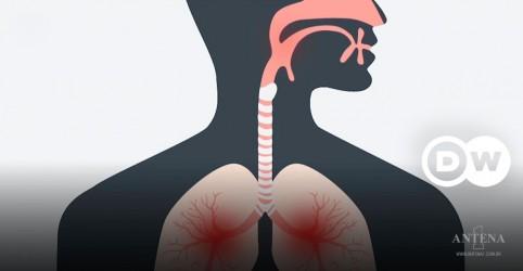 Placeholder - loading - Imagem da notícia Por que os vírus sofrem mutação?