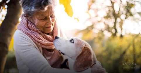 Placeholder - loading - Imagem da notícia Conheça os hábitos relacionados à longevidade