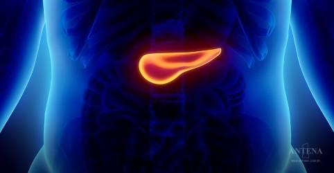 Placeholder - loading - Imagem da notícia Conheça os sintomas do câncer de pâncreas